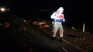 Gercüş'te araçlar koyun sürüsüne daldı: 50 koyun telef oldu, 5 yaralı