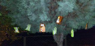 Çocukları sevindirmek istedi, ağaca hediyeler astı