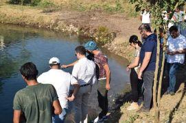 Kozluk'taki balıklı gölün çevre düzenlemesi yapılacak