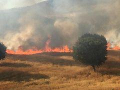 Kozluk'ta çıkan yangında buğday tarlaları kül oldu