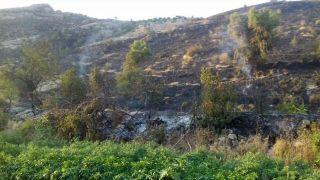 Ağaçlık alanda çıkan yangını köylüler söndürdü