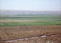 Batman'da 27 bin dekar tarım arazisi sulandı