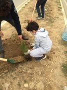Gercüş'te Ağaçlar Kitaplarla Büyüyor Projesi başladı