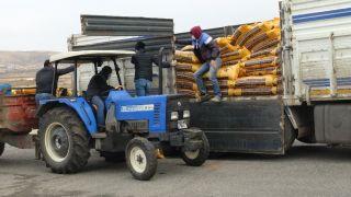Gercüş'te çiftçilere kırmızı mercimek tohumu dağıtıldı