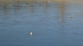 Gercüş'te gölet buz tuttu