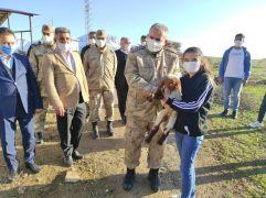 Gazi kızından komutana 'kınalı kuzu' sürprizi